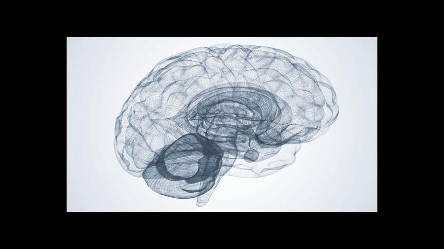 Video Neurolog: Studium cizího jazyka? Možná zbrzdí i Alzheimera