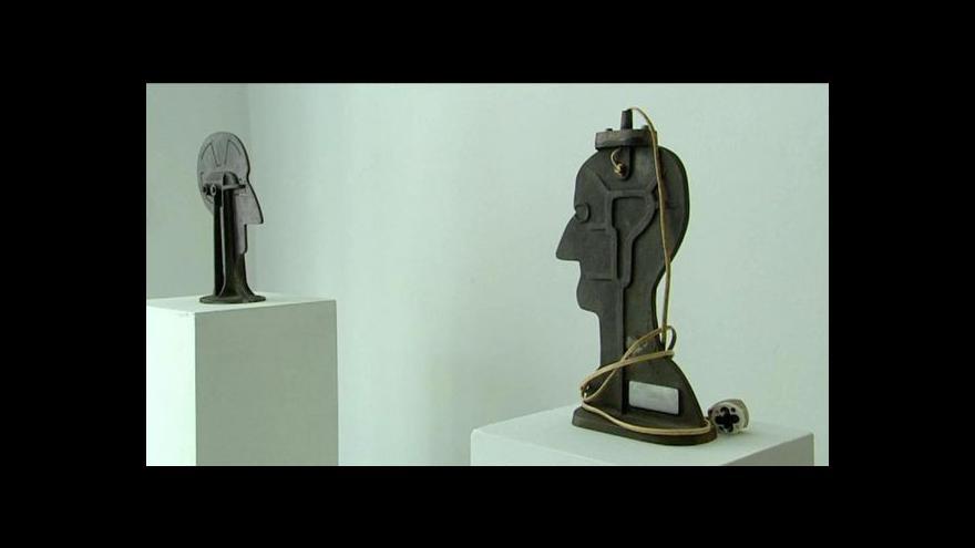 Video Výstava Karla Nepraše a Jana Steklíka