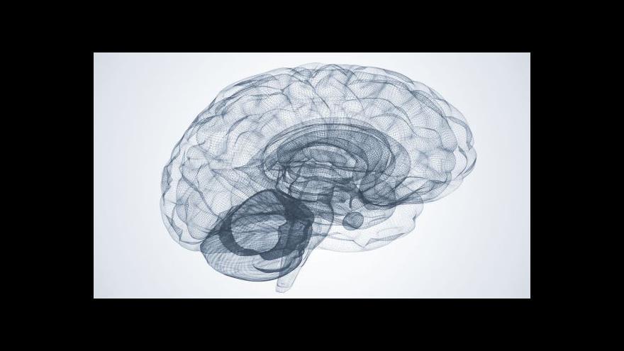 Video UDÁLOSTI: Světový den roztroušené sklerózy
