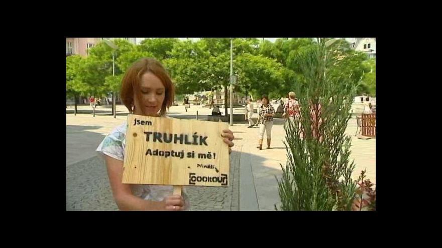 Video Zájemci si mohou v Ostravě pronajmout truhlík
