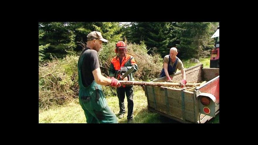 Video Zájem o veřejně prospěšné práce stoupá