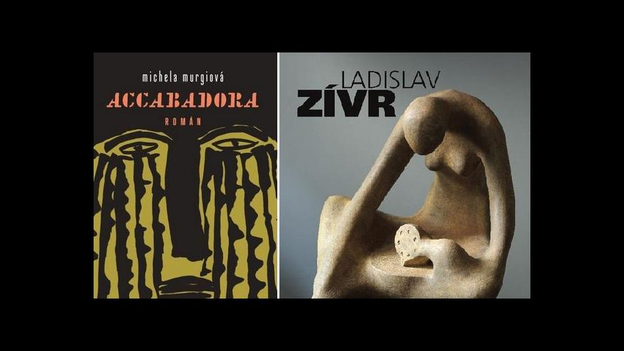 Video Monografie Ladislava Zívra