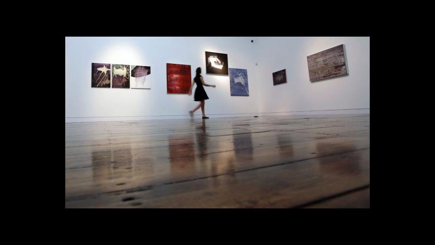 Video Ekonomika ČT24 o investování do umění