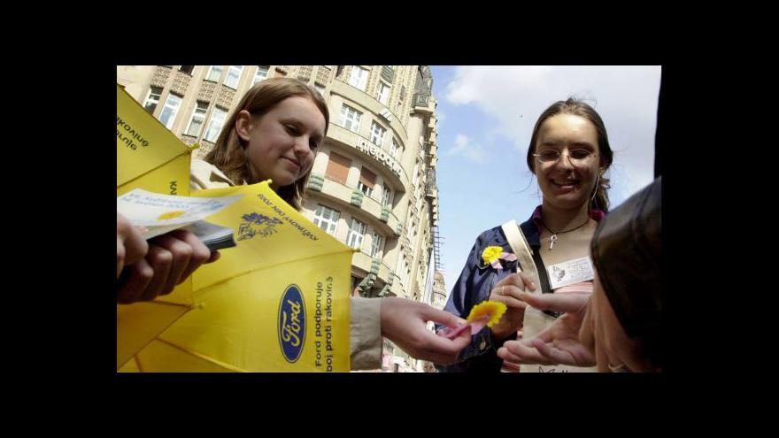 Video Květinový den už po osmnácté: Kupte kvítek proti rakovině