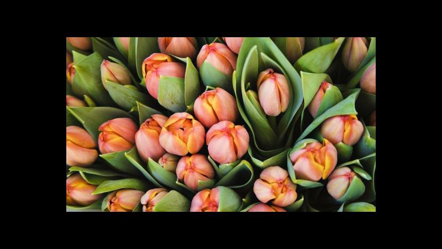 Video Česko slaví Den matek