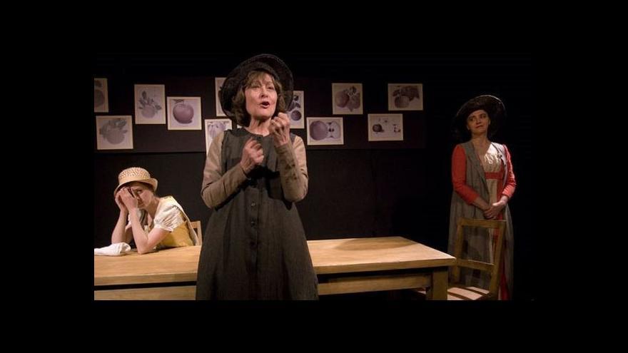 Video Divadlo Viola uvádí hru o Jane Austenové
