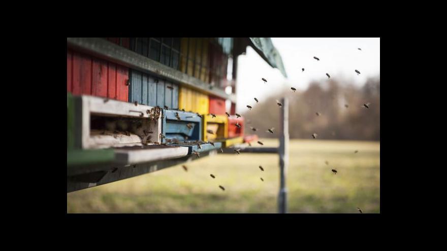 Video Medová krize v Austrálii