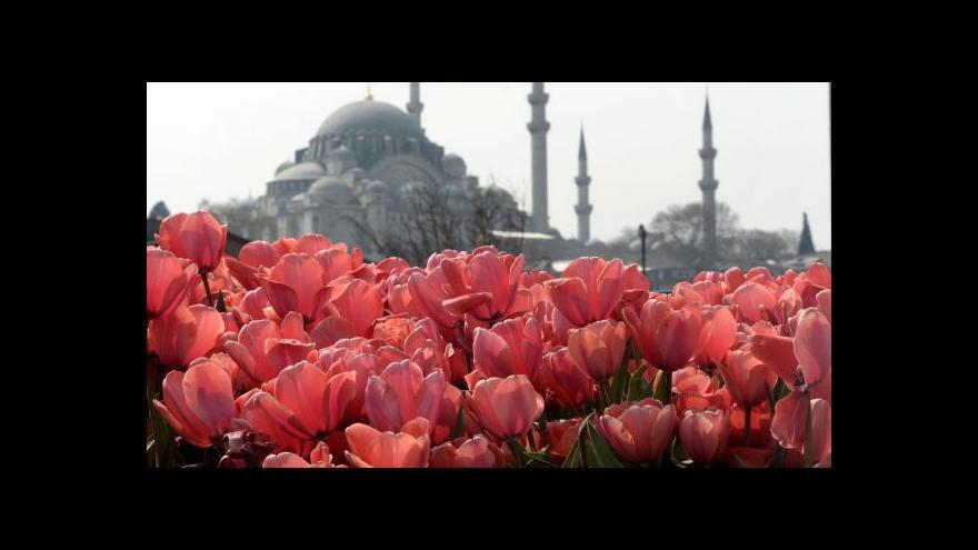 Video V Istanbulu vykvetly tulipány