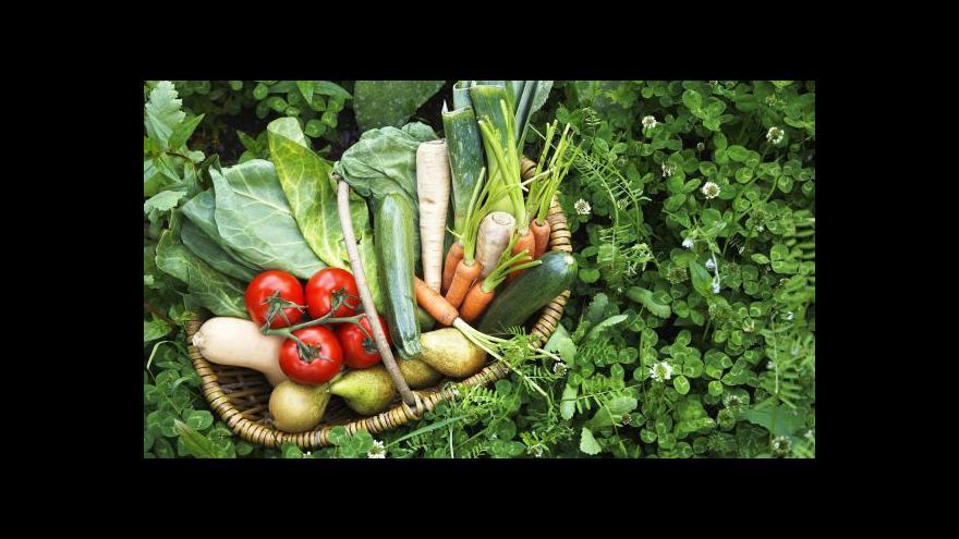 Video Reportáž Barbory Lukšové o biopotravinách