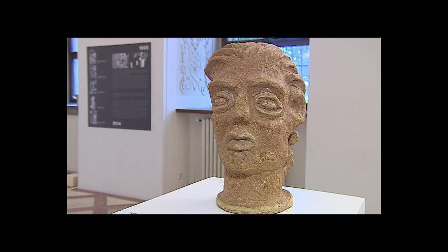 Video Vstup Martiny Tlachové z Moravské galerie v Brně