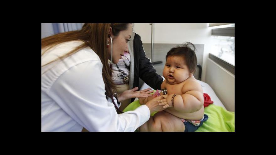 Video Osmiměsíční Santiago váží 21 kilogramů