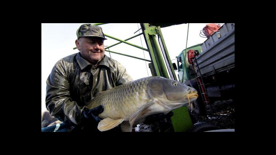 Video No comment: Přelov jedovnického rybníka
