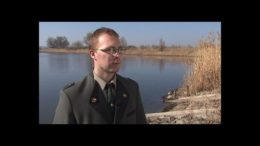 Video Výkyvy počasí popisuje rybníkář Aleš Vavřina
