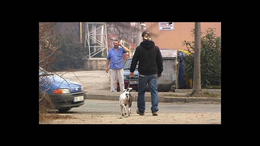 Video Berounští policisté vyšetřují případ pěti bezhlavých psích těl