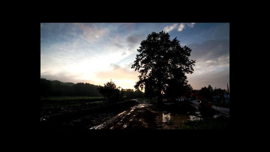 Video Dub ochránce bojuje o titul Evropský strom roku
