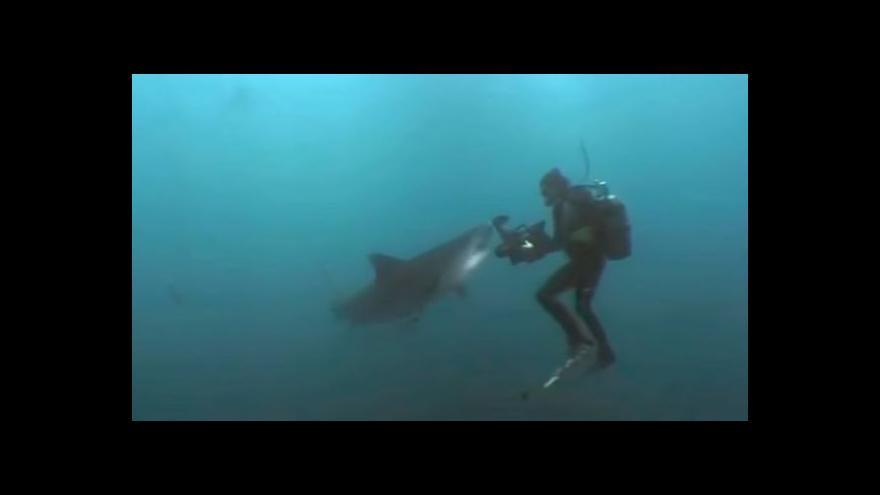 Video Novozélandský lékař přežil útok žraloka