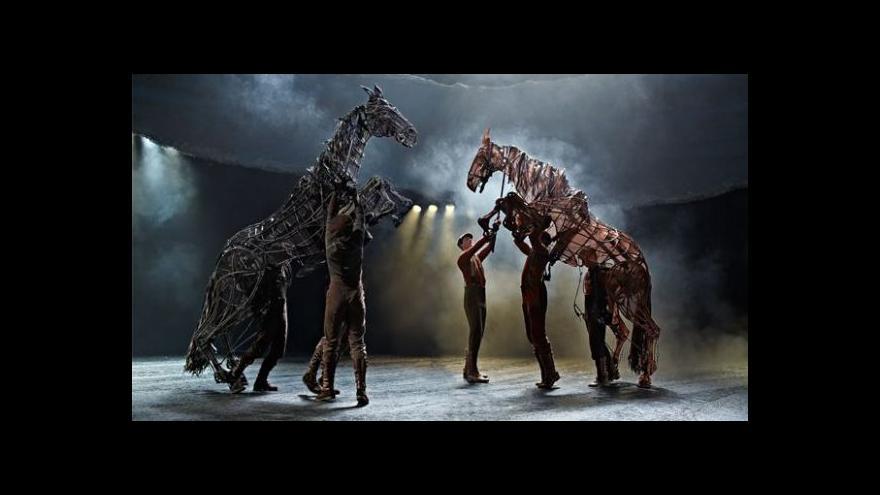Video Válečnému koni se na divadle daří