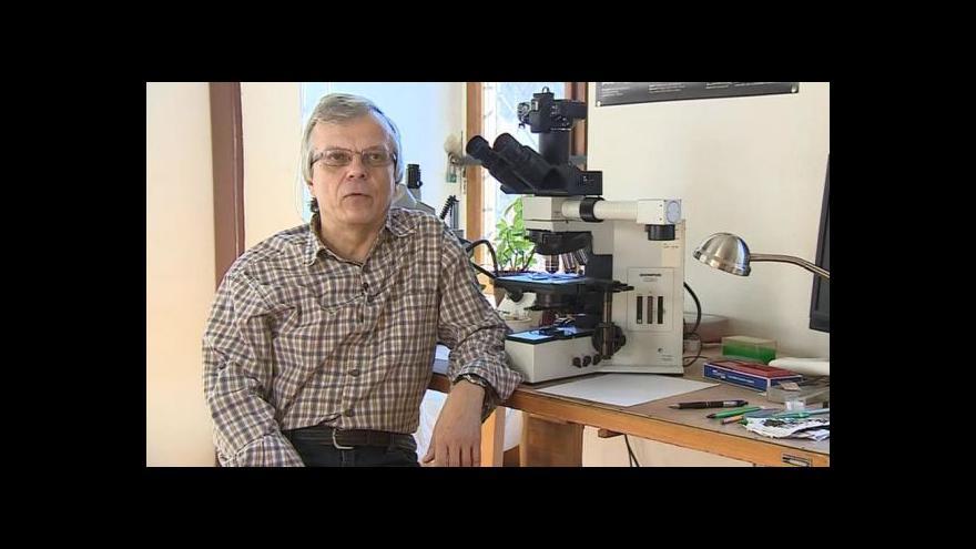 Video O podzimních a zimních houbách hovoří mykolog Vladimír Antonín