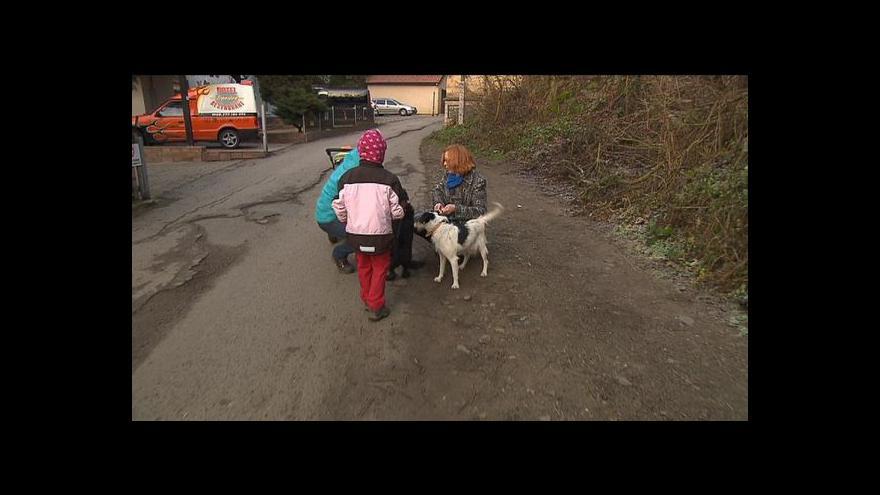 Video Zuzana Smiešková o psím detektivovi