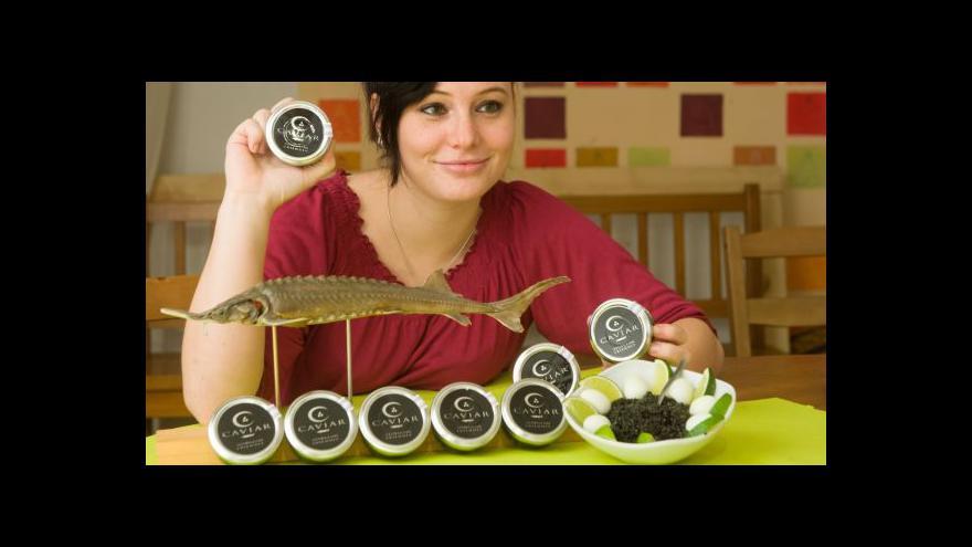 Video Veronika Kabátová o jihočeském kaviáru