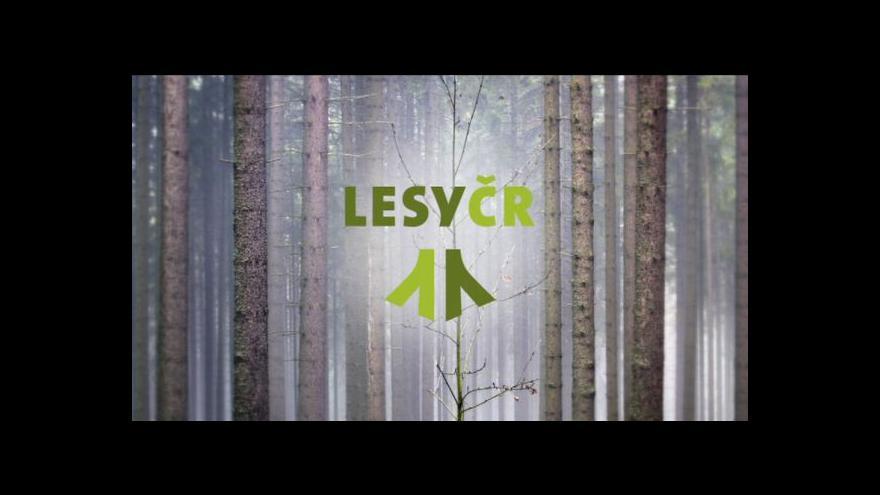 Video Události o problémech Lesů ČR