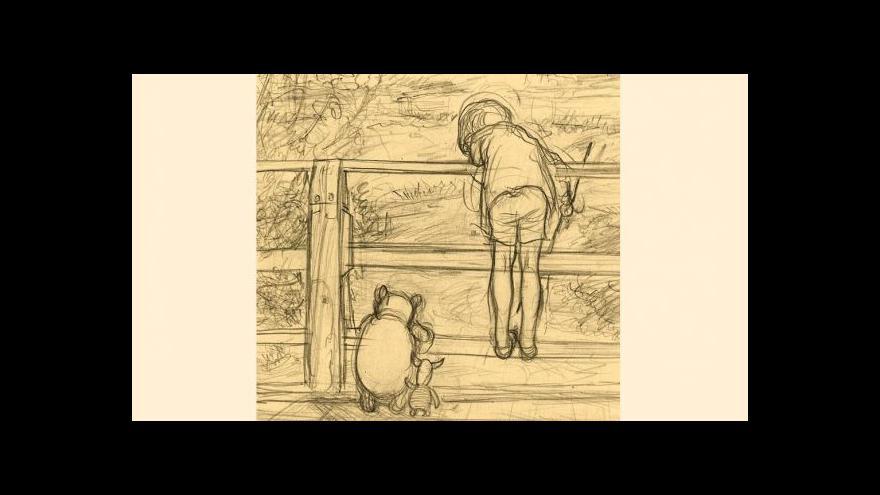 Video Medvídek Pú v aukci