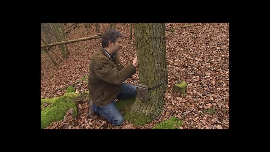 Video O instalování fotopastí hovoří zoolog Martin Valášek