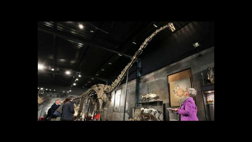 Video V Británii proběhla první dražba dinosauří kostry