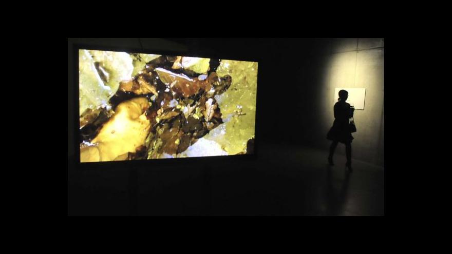 Video Výstava Davida Michalka a Miloše Šejna