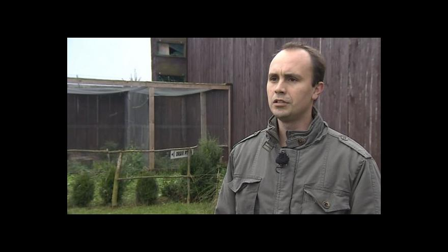 Video O případu zraněné vydry hovoří Jaroslav Sedláček