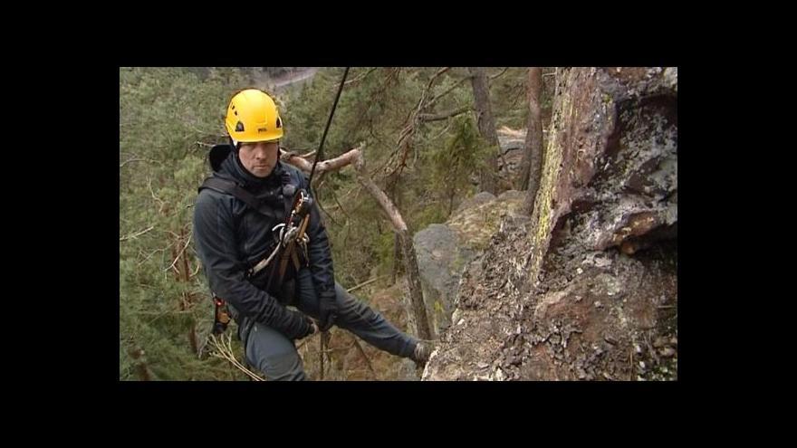 Video Strážci Šumavy čistí hnízda pro návrat sokolů