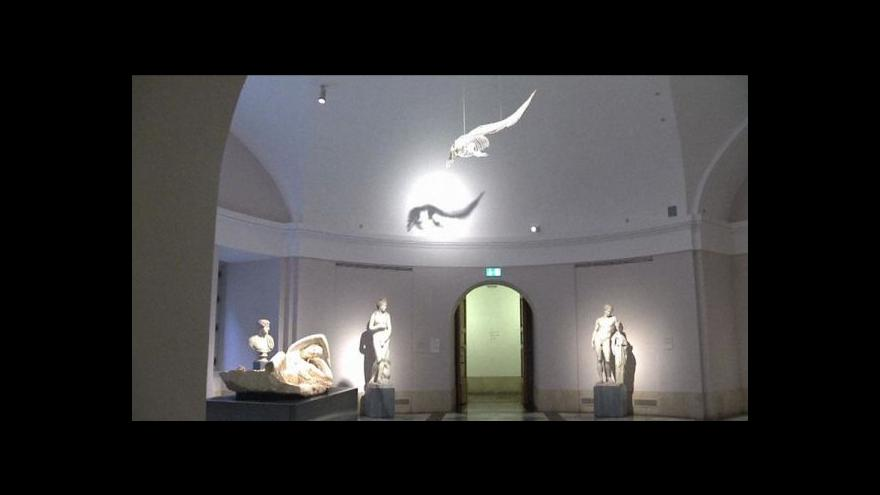 Video Muzeum Prado: Historias Naturales