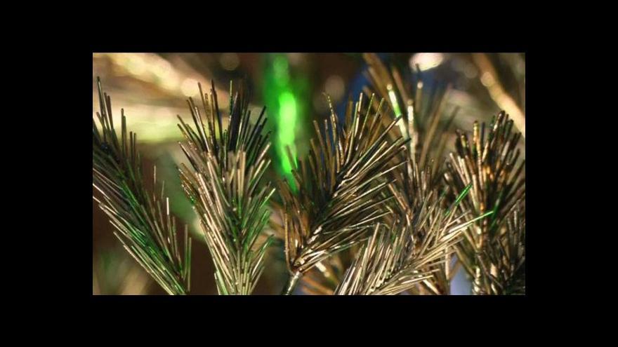 Video V Japonsku vznikla socha borovice jako symbol obnovy země