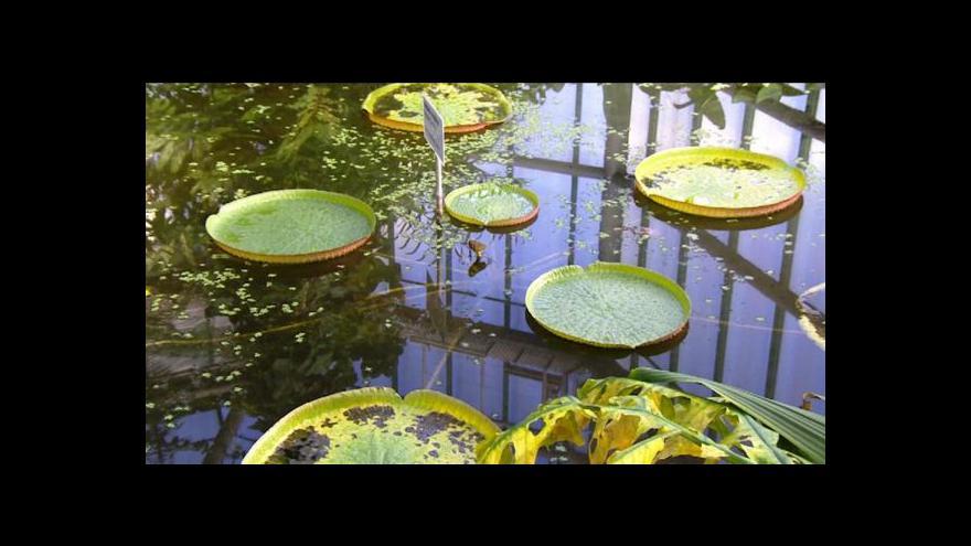 Video Liberecká botanická zahrada se rozrůstá
