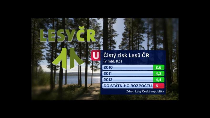 Video Hledání nového šéfa Lesů ČR