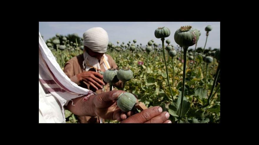 Video Horizont ČT24 k pěstování opia v Afghánistánu