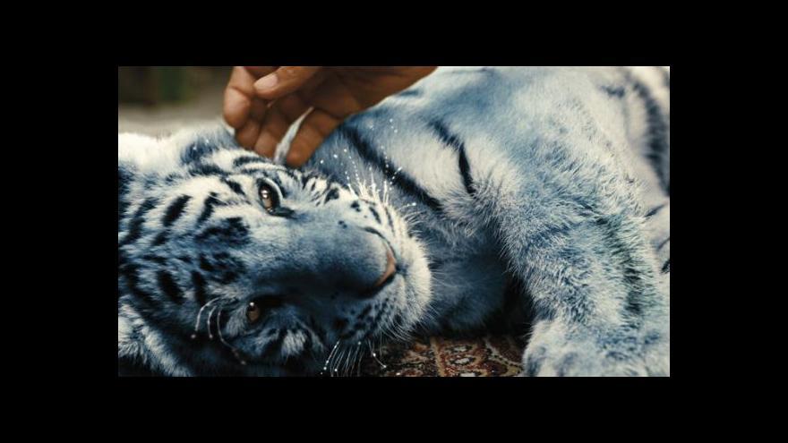 Video Vánoční premiéry: Duch nad zlato, Sněžný drak, Modrý tygr