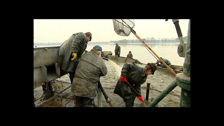 Video Výlov rybníka Bezruč