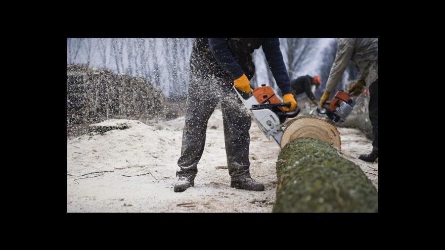 Video Sporná těžba ve státních lesích tématem Událostí
