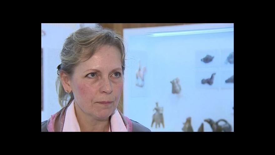 Video Akvamanile popisuje Zdeňka Měchurová
