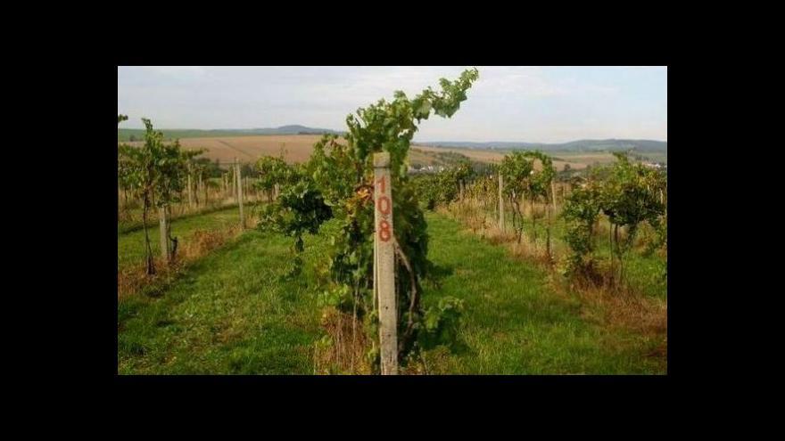 Video Tři minuty z Horních Dunajovic