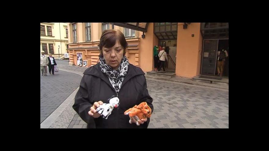 Video Rizikové hračky popisuje ředitelka Tatiana Neuhybelová