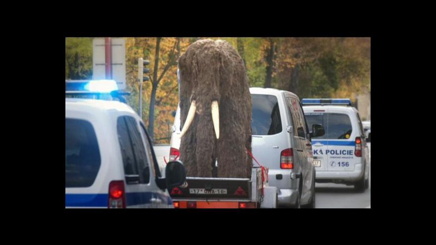 Video Josef Kvasnička o stěhování mamuta