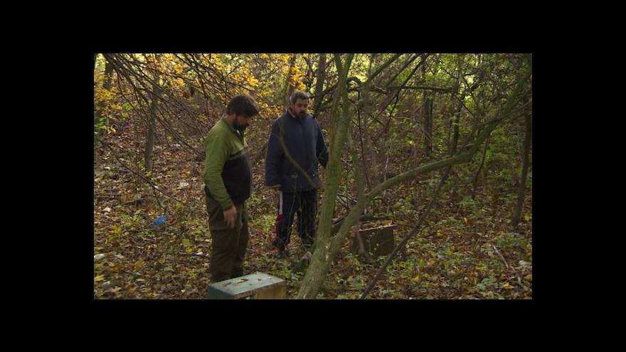 Video Erik Knajfl o krádeži včelínu