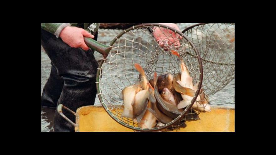 Video Rozhovor s předsedou představenstva Rybářství Třeboň