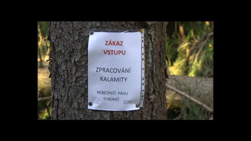 Video Blanka Poulová o zákazu vstupu do lesů