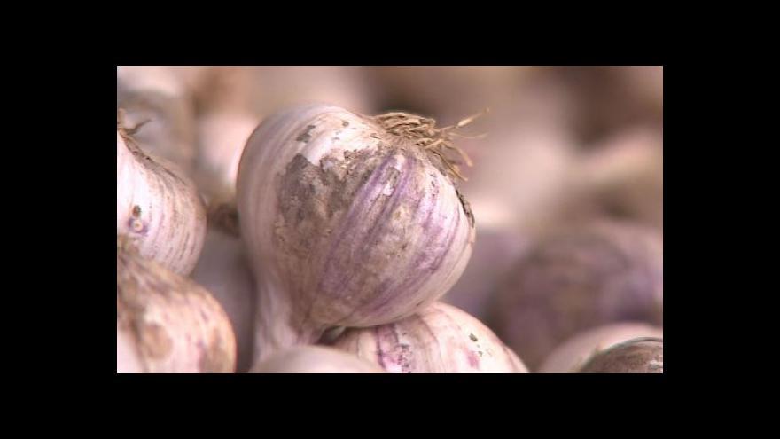 Video NO COMMENT: Česnekové slavnosti v Rosicích