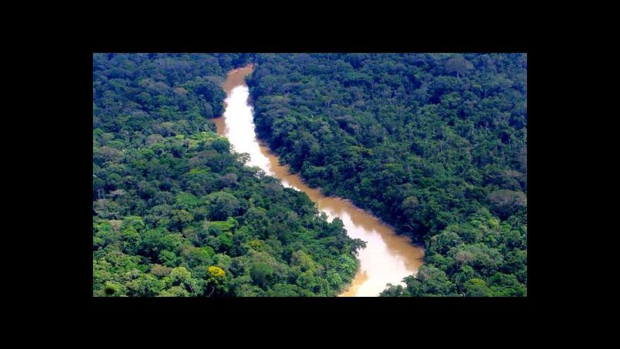 Video Ekvádorský prezident povolil kácení v národním parku Yasuni