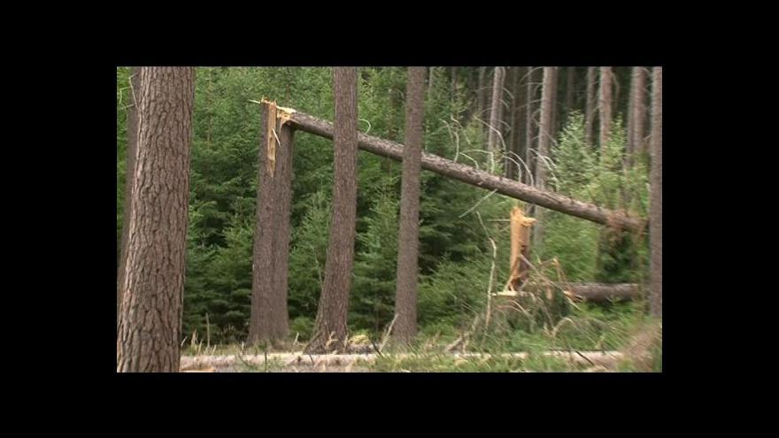 Video Silničáři nestíhají odklízet popadané stromy