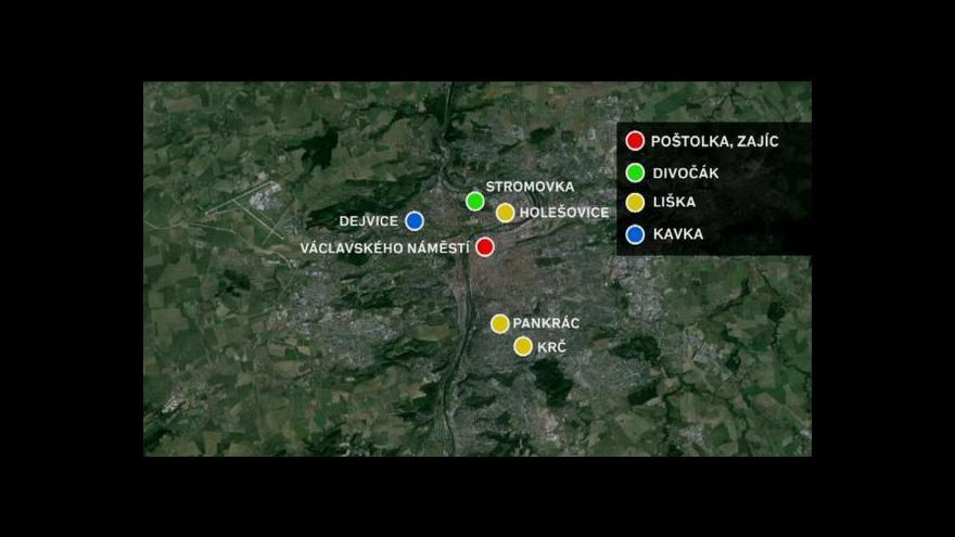 Video Co všechno žije v Praze?